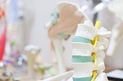 筋肉の緊張、凝りや骨格の歪み 身体のアンバランスを改善